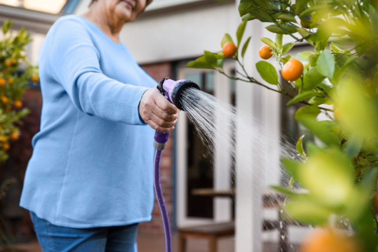 Watering the garden with recycled water
